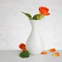Цветя 6